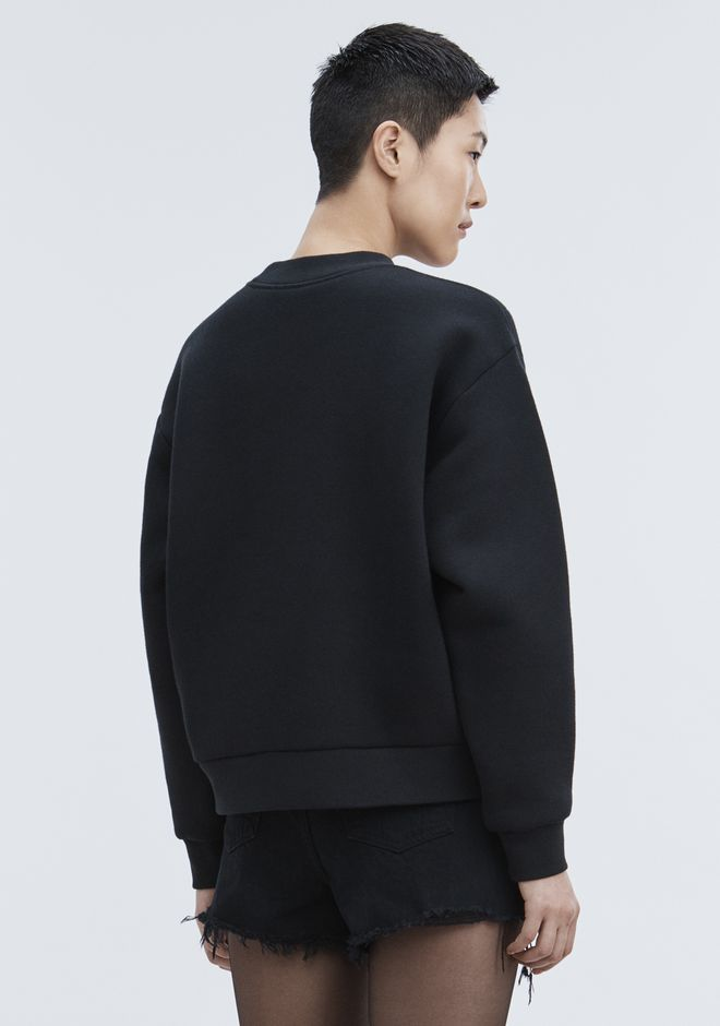 ALEXANDER WANG CEO PULLOVER TOP Adult 12_n_r