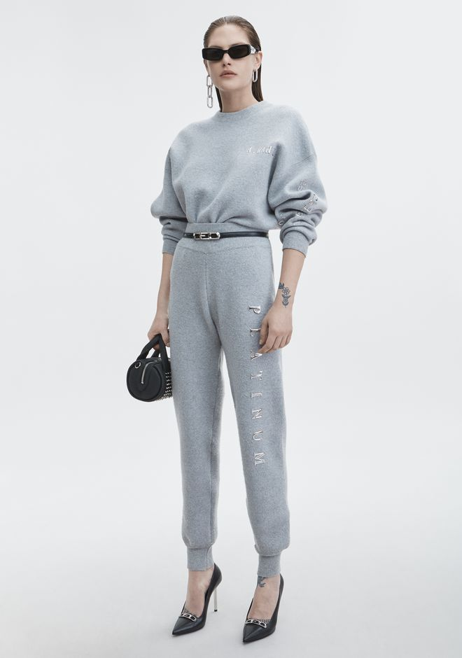ALEXANDER WANG PLATINUM PULLOVER  TOP Adult 12_n_f