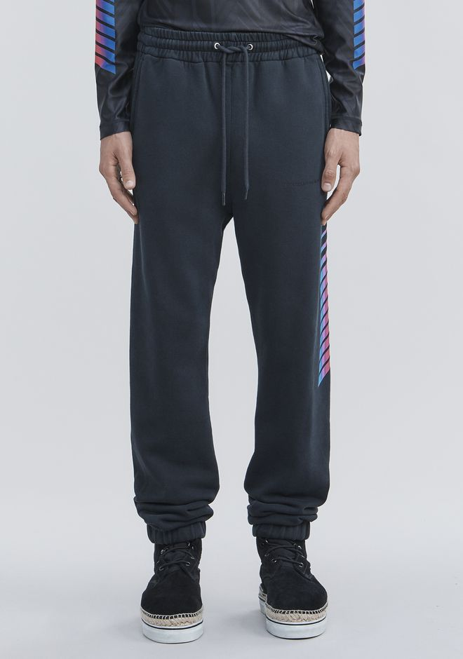 ALEXANDER WANG AWG SWEATPANTS PANTS Adult 12_n_d