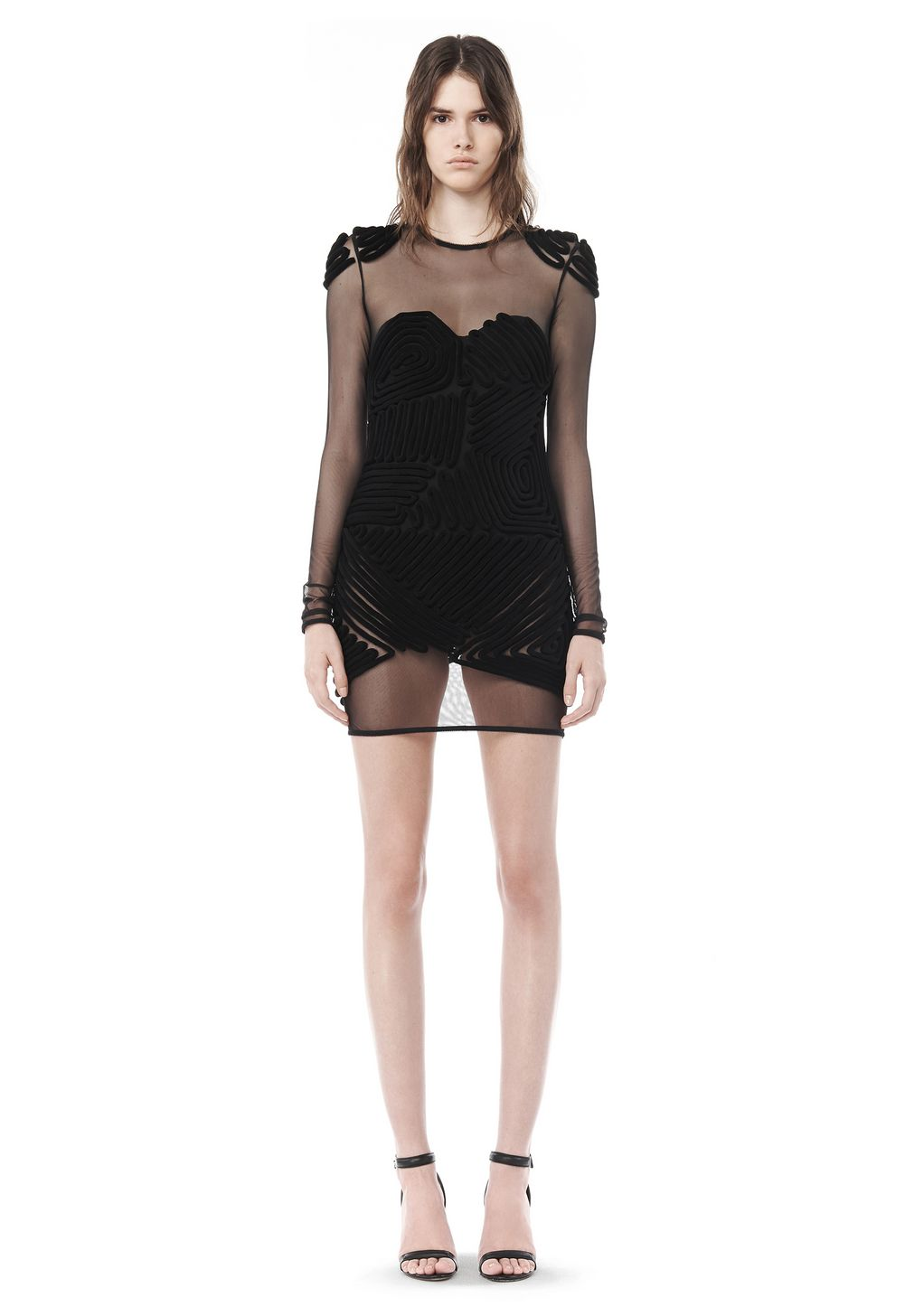 alexander wang spring mesh dress with graphic detail
