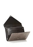 ALEXANDER WANG PRISMA ENVELOPE  WALLET IN OYSTER WITH RHODIUM Wallets Adult 8_n_r