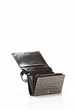 ALEXANDER WANG PRISMA DOUBLE BIKER PURSE IN EMBOSSED OYSTER SMALL LEATHER GOOD Adult 8_n_r